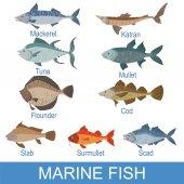 Sea Fish Set With Names
