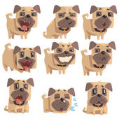 Little Pet Pug Dog Puppy With Collar Set Of Emoji Facial Expressions And Activities Cartoon Illustrations