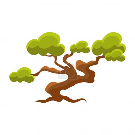 Green Pine Tree Bonsai Miniature Traditional Japanese Garden Landscape Element Vector Illustration