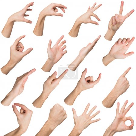 Photo for White man hands showing symbols and gestures, like, offering isolated on white background. Set of male hands. - Royalty Free Image