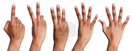 Photo for Set of african-american hands counting. Collection of black hands showing one, two, three, four, five on white isolated background - Royalty Free Image