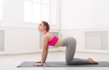 Photo for Fitness, woman yoga relax meditation in cow pose pose in gym at white background. Young slim girl makes exercise. - Royalty Free Image