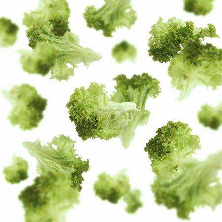 Photo pour Alimentation et cuisson végétariennes saines avec divers ingrédients de légumes hachés en vol. Feuilles de laitue volantes sur fond blanc, isolées - image libre de droit