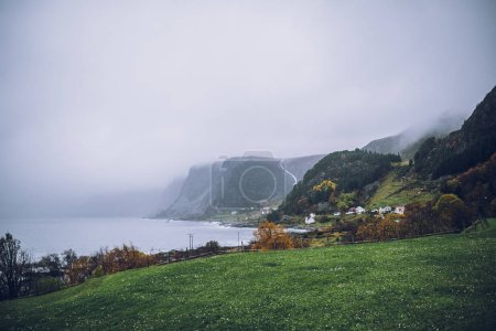 Photo for Green mountain valley with plants, Norway, Fjords - Royalty Free Image