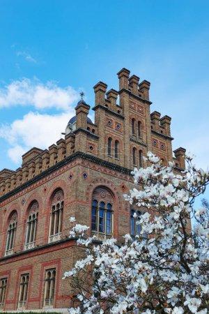 Chernivtsi National University.
