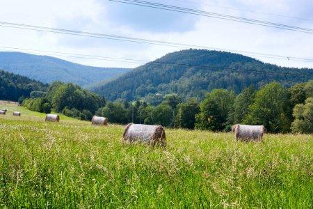 Rural Landscape with stacks of