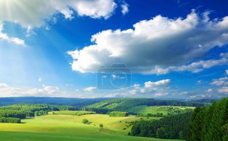 Photo for Summer field with blue sky and white big clouds. - Royalty Free Image