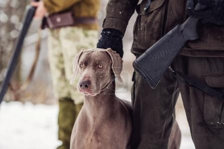 hunter and his weimaraner dog by a river in the winter hunting s