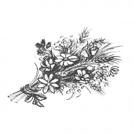 Illustration for A bouquet of wildflowers. Hand drawn sketched art. - Royalty Free Image