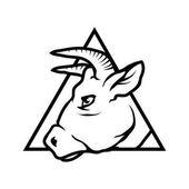 Bull  logo vector illustration