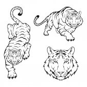 Tiger logo template vector illustration