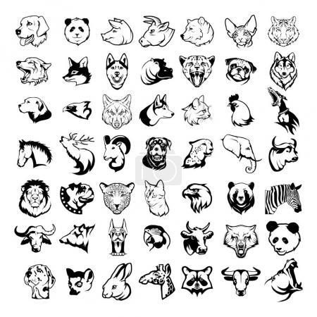 Big animal heads set