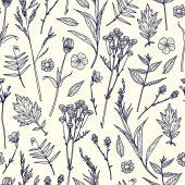 Seamless pattern with plants Sketch Freehand drawing