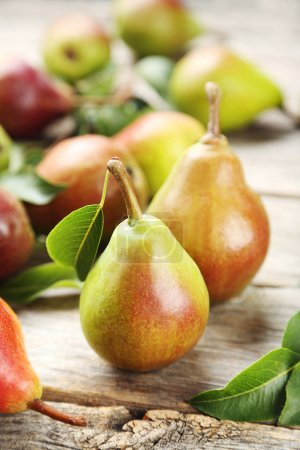 Ripe sweet pears with leaves