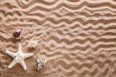 Starfish and seashells on beach sand