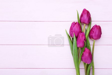 Bouquet of purple tulips on pink wooden table