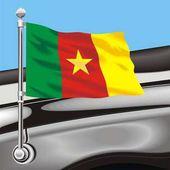 Vector clip art flag Cameroon