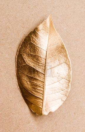 Closeup detailed shot of golden painted leaf. Top view