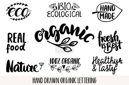 Illustration for Hand drawn Eco friendly lettering. Vector Bio organic green set. - Royalty Free Image