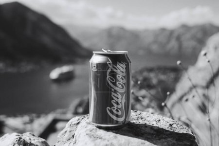 Canned Coca cola on rock