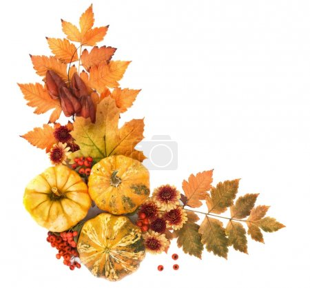 Autumn Frame of Leaves, Berries, Flowers and Pumpk...