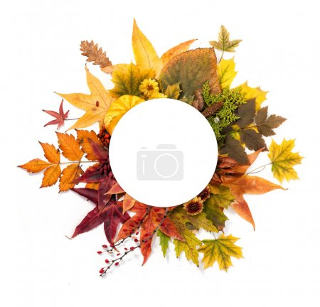 Autumn Wreath of Leaves, Berries, Flowers and Pump...