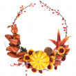 Autumn Wreath of Branch of Red Berry, Fetus of Sav...