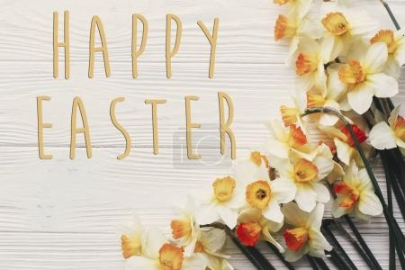 happy easter text flat lay with yellow flowers. stylish daffodils on rustic wooden background top view.  easter greeting card. space for text
