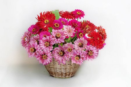 Bouquet of pink flowers in a basket on a white background