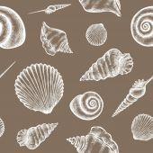 shells pattern 02