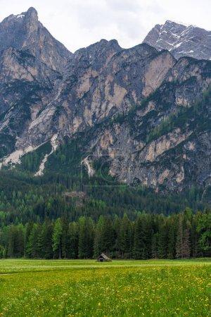 Photo pour Vue panoramique époustouflante d'une vieille maison en bois sur une colline verdoyante avec forêts et montagnes en arrière-plan - image libre de droit