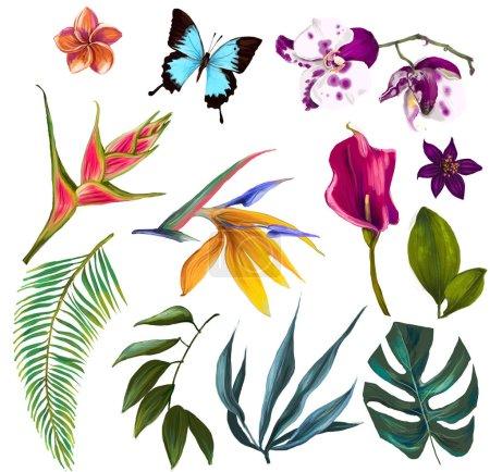 Foto de Con flores exóticas - Imagen libre de derechos