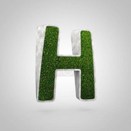 Gras Buchstabe h Großbuchstaben