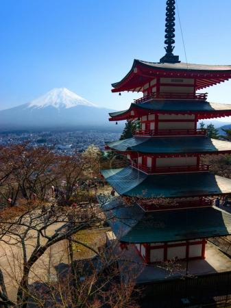 Mount Fuji and the iconic five-storied Chureito Pagoda during spring in Japan