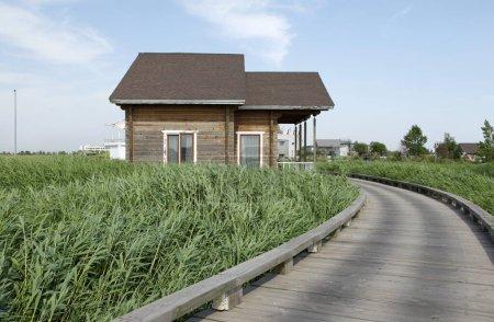 Parc humide de maisons en bois, très beau