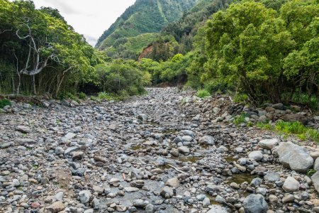 Iao River On Maui