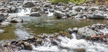 Iao River Pool 2