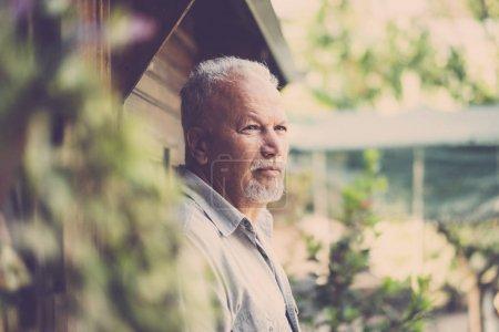 ancien bel homme âgé, senior portrait unique en plein air
