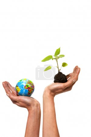 Green concept - Sustainable development choice