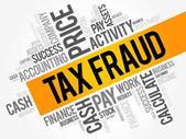 Tax fraud word cloud collage