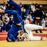 Постер, плакат: wrestling athletes judoka