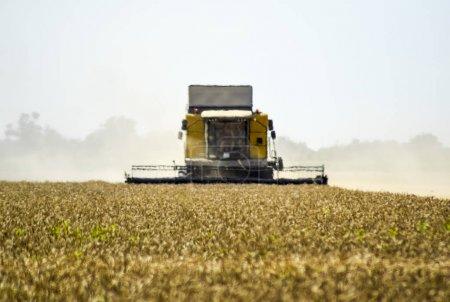 Photo pour Combiner des machines agricoles Moissonneuses. La machine pour la récolte des céréales. - image libre de droit