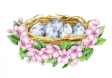 Nest and blue eggs in bloom. Watercolor illustration. Spring symbol. Happy Easter.