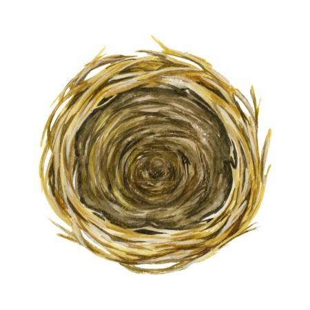 Empty Nest. Basket. Watercolor illustration. Spring symbol. Happy Easter.