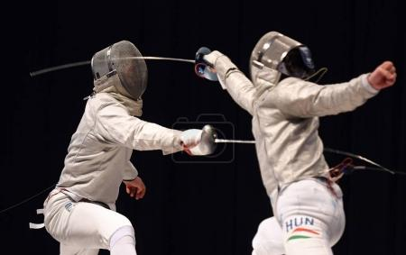 International Fencing Federation Fencing Cup