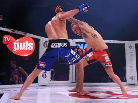 MMA Mixed Martial Arts Fight Night