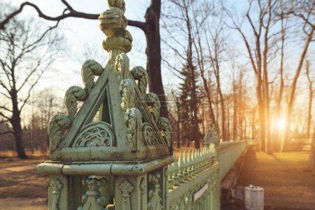Photo pour Clôture verte en fer antique close-up dans le parc - image libre de droit