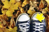 Blue sneakers on a yellow fallen maple leaves background.Autumn,Fall season,Season change concept.
