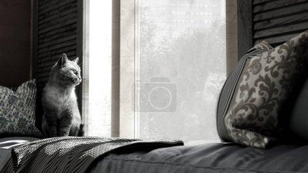 confortable concept de la maison chat assis sur un matelas par la fenêtre 3d rendre l'image