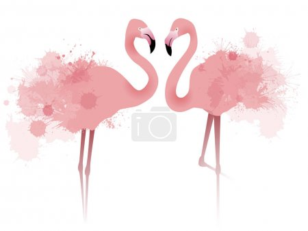 couple pink flamingos
